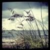 Kure Beach, NC - Bring your sunblock!