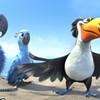 <em>Rio</em>: For the birds ... and the kids