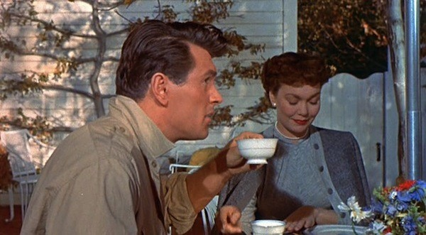 Rock Hudson and Jane Wyman in All That Heaven Allows (Photo: Criterion Collection)