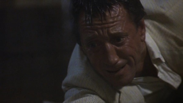 Roy Scheider in Last Embrace (Photo: Kino)