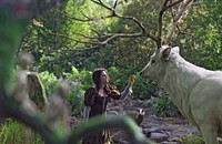 Weekend Film Reviews: <em>Snow White and the Huntsman; Darling Companion</em>
