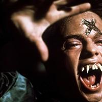 Stephen Geoffreys in Fright Night (Photo: Columbia)