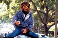 <em>Teen Wolf</em> crashes screening
