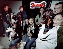 CHRIS RADOK - The Dog Bar