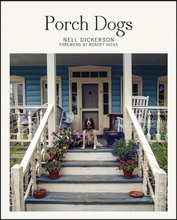 de0f6cfa_porch_dogs.jpg