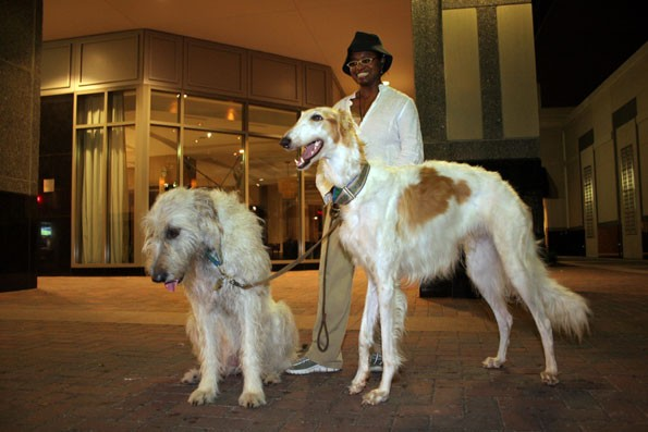 TWO DOG NIGHT: Roxane Nickeo walks her wolfounds Gaeil (left) and Odysseus - CATALINA KULCZAR