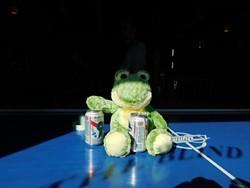 A frog at the Pig.