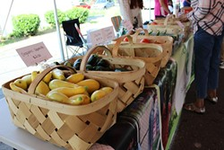 Just a bit of the selection from Sustainability Village at Rosa Parks Farmer Market. (Photo by Ryan Pitkin)