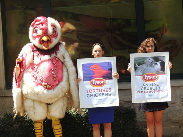 Abby the Abused Chicken was designed in a Hollywood special-effects studio and is now touring the southeast looking for help. - RYAN PITKIN