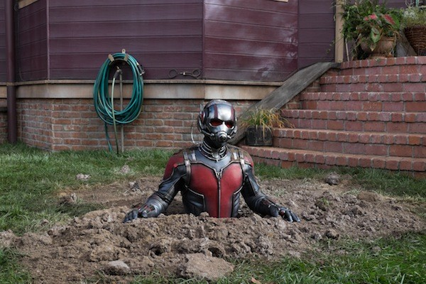 Paul Rudd in Ant-Man (Photo: Marvel & Disney)