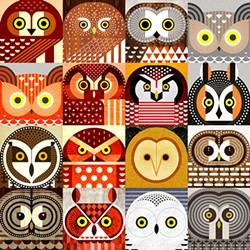 """North American Owls"" by Scott Partridge"