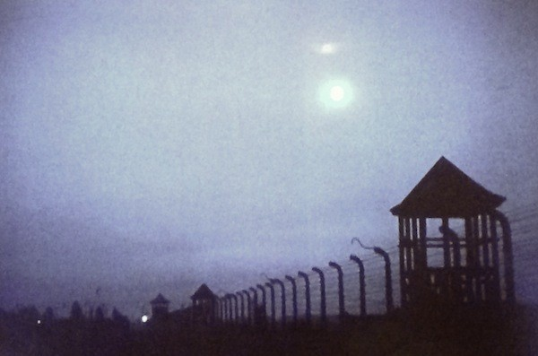 Night and Fog (Photo: Criterion)