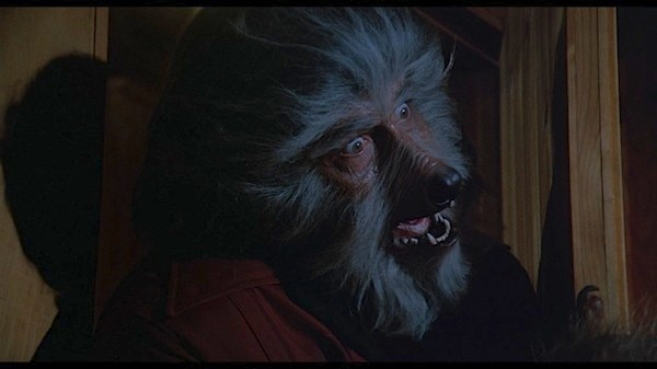 Kerwin Mathews in The Boy Who Cried Werewolf (Photo: Shout! Factory)