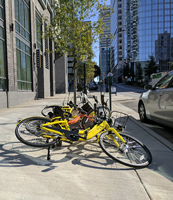 Dockless bikes on West 4th Street look as if they were kicked over. (Photo by Ryan Pitkin)