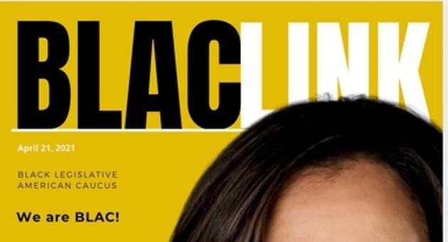 National Black Business Week : BLACLINK