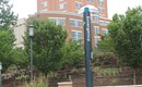 UNC Charlotte addresses high number of rape reports, provides new resources for students