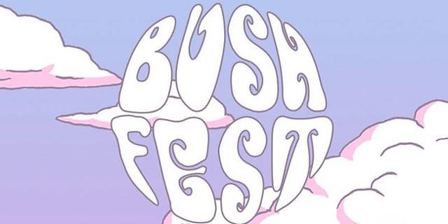 bushfest.jpg
