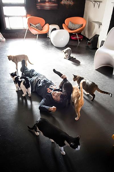 Lori Konawalik's son, Carter, lounges with cats at Mac Tabby. (Photo by Lori Konawalik)