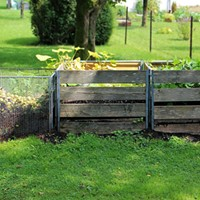 Why You Should Start Composting