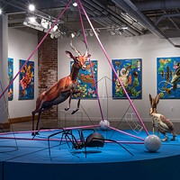 Anne Lemanski's Simulacra exhibit continues through Jan. 2 at McColl Center for Art + Innovation.