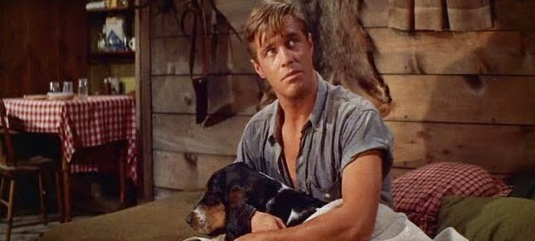 George Peppard in Home from the Hill (Photo: Warner)