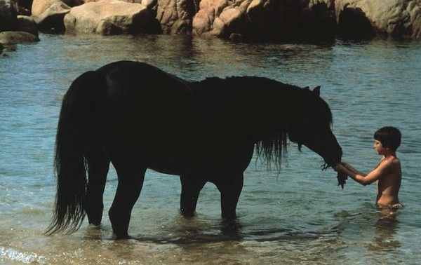Kelly Reno in The Black Stallion (Photo: Criterion)