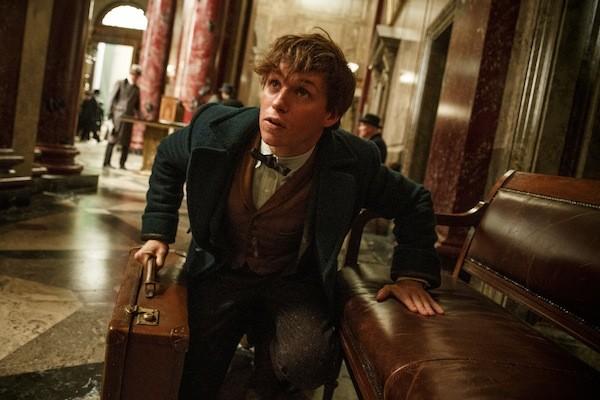 Eddie Redmayne in Fantastic Beasts and Where to Find Them (Photo: Warner Bros.)