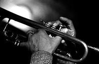 THE JAZZ ROOM: Trumpet Summit