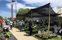 Spring Plant Sale at the UNC Charlotte Botanical Gardens
