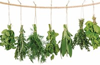 National Herb Day