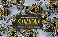 Swarm, works by Adrian Rhodes