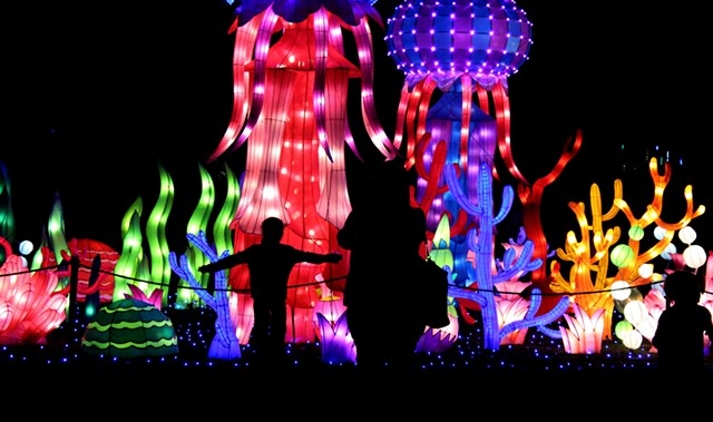charlotte 39 s chinese lantern festival kicks off to multicolored start slideshows creative. Black Bedroom Furniture Sets. Home Design Ideas