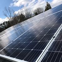 How Trump's Tariffs and Duke Energy's Rebates Impact the Solar Market Today