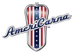 13acee98_americarna_logo_1.jpg