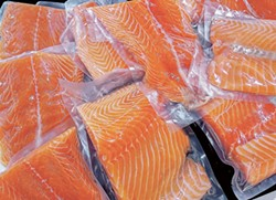 Many consumers are worried about how genetically modified salmon will impact the industry.