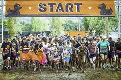 ab516d41_mud_run_start.jpg
