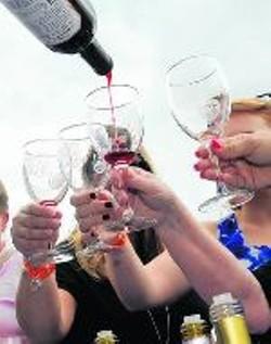 Charlotte tour to NC Wine Festival