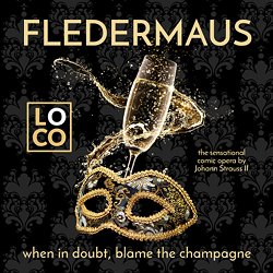 d3250fc6_fledermaus_poster_square_small.png