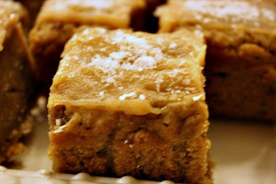 Vegan Peanut Butter Coconut Blondies