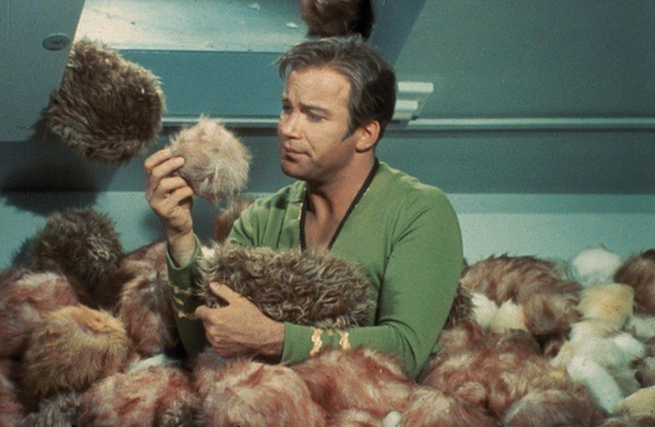 William Shatner, Star Trek's James T. Kirk himself, will be at the Mad Monster Party Friday and Saturday. (Photo: Paramount)