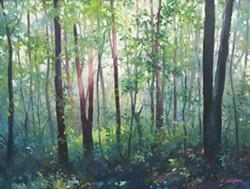 29fe1592_morning_woods_high.jpg