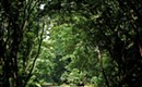 You, too, can help map Charlotte's future! (And more arguments for paying attention to local issues.)