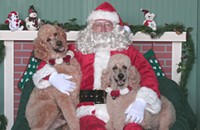 12/5 — Free Pet Pictures with Santa at Hotel Allegro