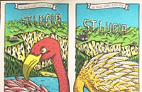 A couple of tropical birds on St. Lucia on a gig poster