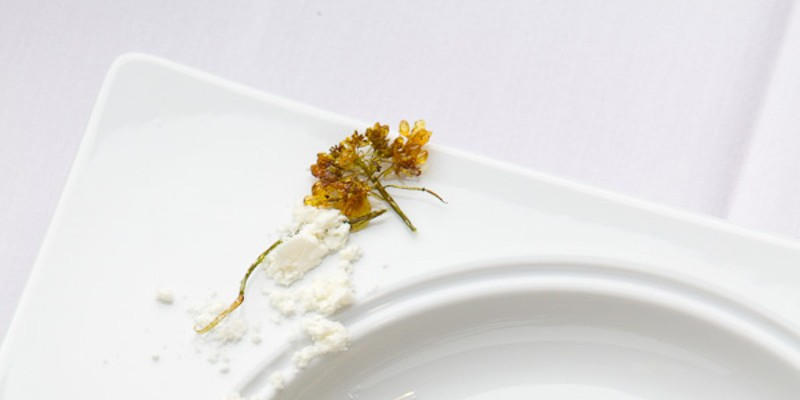 Our favorite restaurants of 2011 in pictures El Ideas Jeffrey Marini