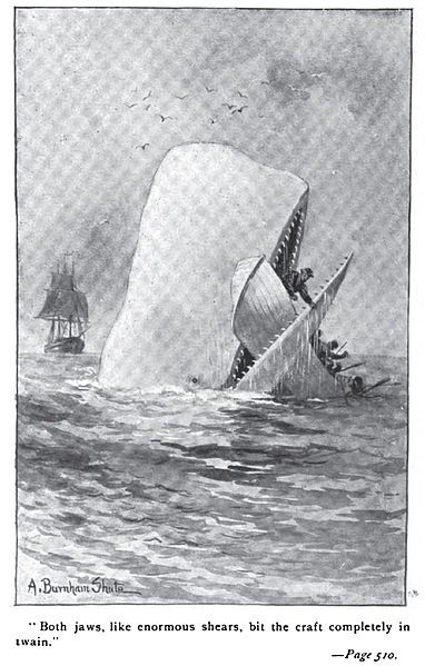 An illustration from an early edition of Moby Dick by A. Burnham Shute