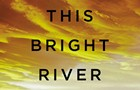 Book review: Patrick Somerville's <i>This Bright River</i>
