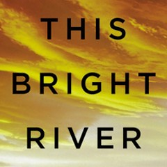 Book review: Patrick Somerville's This Bright River