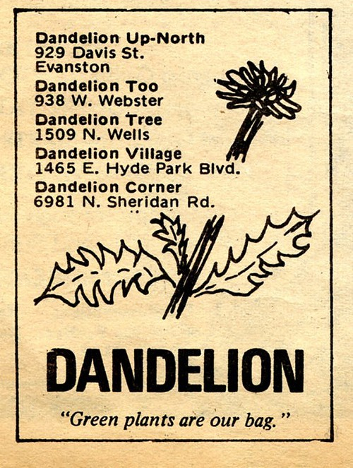 Chicago Reader @ Forty ads from the past: Dandelion