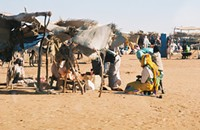 Darfur doubleheader tomorrow at the U. of C.